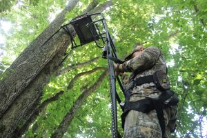 Connect the full-body harness to the lifeline at the ground and slide the knot up and down as you climb in or out of the stand.